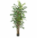 7' Bamboo Palm Silk Tree