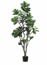 7' Fiddle Leaf Artificial Tree with PU Trunk and 152 Leaves in Plastic Pot - Set of 2 Trees