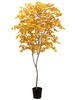7' Ginkgo Artificial Tree in Pot - Set of 2