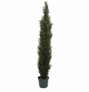 7' Mini Cedar Pine Tree w/3614 Tips in 12� Pot (Two Tone Green)