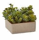 7� Mixed Succulent Artificial Plant with Decorative Planter -