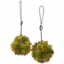 """7"""" Mixed Succulent Hanging Spheres (Set of 2)"""