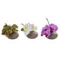 7� Phalaenopsis Orchid Artificial Arrangement (Set of 3)