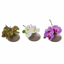 "7"" Phalaenopsis Orchid Artificial Arrangement (Set of 3)"