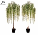 """74"""" UV Protected Willow Artificial Tree in Plastic Pot - Set of 2"""