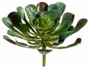 "8.5"" Artificial Aeonium Succulent Plant - Set of 6"