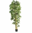8� Biggy Style Bamboo Tree