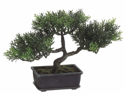 "9"" Artificial Tea Leaf Bonsai Tree - Potted"