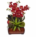 Autumn Orchid & Succulent Arrangement w/Chest