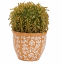 "9"" Artificial Barrel Cactus Plant in Decorative Vase"