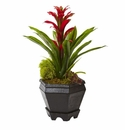 "16.5"" Artificial Bromeliad in Black Hexagon Planter - Red"