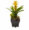 "16.5"" Artificial Bromeliad in Black Hexagon Planter - Yellow"
