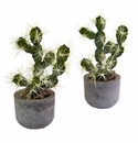 """10"""" Artificial Cactus Potted (Set of 2)"""