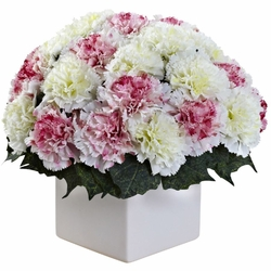 "11"" Carnation Arrangement in Vase - Mauve / White Color"