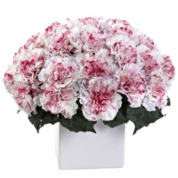 Carnation Arrangement w/Vase