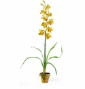 "32"" Cymbididium w/Moss Pot Silk Orchid Arrangement"
