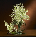 Dancing Lady Silk Orchid Flower (6 Stems)