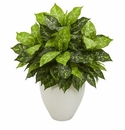 Dieffenbachia Artificial Plant in White Planter -