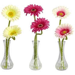 "13"" Gerber Daisy with Bud Vase (Set of 3)"