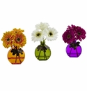 Gerber Daisy w/Colored Vase (Set of 3)