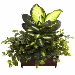 "30"" Large Golden Dieffenbachia, Philo & Pothos w/Wood Planter"