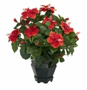 "20"" Artificial Hibiscus Silk Flower Arrangement with Black Hexagon Vase Silk Plant"