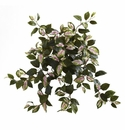 """21"""" Artificial Hoya Hanging Bush (Set of 4) - Non Potted"""