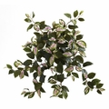 "21"" Artificial Hoya Hanging Bush (Set of 4) - Non Potted"