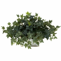 "14"" Ivy with White Wash Planter Silk Plant"