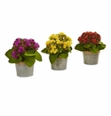 Kalanchoe Artificial Arrangements (Set of 3) -