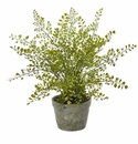 Maiden Hair Artificial Plant in Decorative Planter -