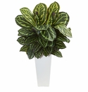 3' Maranta Artificial Plant in White Tower Vase
