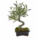 Mini Olive Artificial Bonsai Tree -