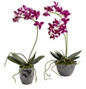 "13.5"" Mini Phalaenopsis w/Metallic Vase (Set of 2)"