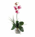 "20"" Mini Phalaenopsis Liquid Illusion Silk Orchid Arrangement"