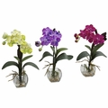 "15"" Mini Vanda Orchid Arrangement (Set of 3)"