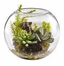"""6.5"""" Artificial Succulent Garden with Mixed Cactus in Glass Vase"""
