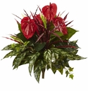 "24"" Mixed Anthurium Artificial Bush (Set of 2) - Non Potted"