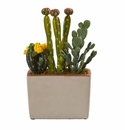 Mixed Cactus Artificial Plant with Decorative Planter -