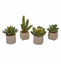 Mixed Succulent Artificial Plant (Set of 4) -