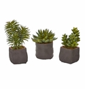 Mixed Succulent Trio Artificial Plant (Set of 3) -