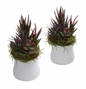 """9"""" Mixed Artificial Succulent with White Planter (Set of 2)"""