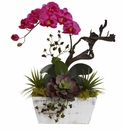 """21"""" Orchid & Succulent Garden with White Wash Planter - Beauty"""