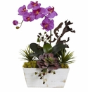 """21"""" Orchid & Succulent Garden with White Wash Planter - Orchid"""