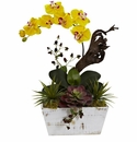 """21"""" Orchid & Succulent Garden with White Wash Planter - Yellow"""