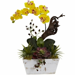 "21"" Orchid & Succulent Garden with White Wash Planter - Yellow"