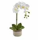 "19"" Silk Phalaenopsis Orchid Flower Arrangement in Ceramic Pot"