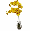 "24"" Phalaenopsis Orchid in Vase - Yellow"
