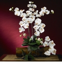 "31"" Phalaenopsis Silk Orchid Flower w/Leaves (Set of 6 Stems - Non Potted)"