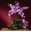 "31"" Phalaenopsis Silk Orchid Flower w/Leaves (Set of 6 Stems - Non Potted) - Mauve"